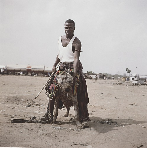 Pieter Hugo, Abdullahi Mohammed with Gumu, Ogere-Remo, Nigeria, 2007. From the series Gadawan Kura – The Hyena Men Series II. C-print, 172,5✕172,5 cm. © the artist