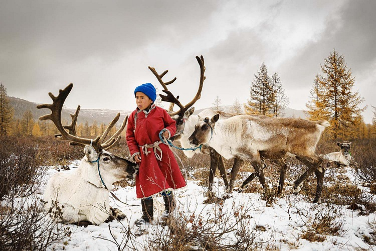 Pehuen Grotti, The child and the reindeers. © Pehuen Grotti, France, Entry, Open, Travel (Open competition), 2018 Sony World Photography Awards.