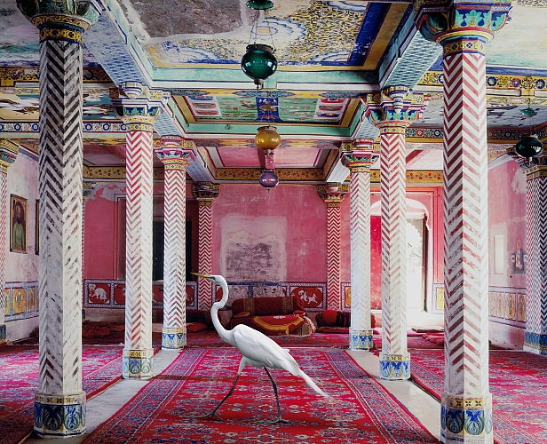 Karen Knorr, India Song. Voler vers la liberté, Dungarpur, Inde dalla mostra Fables in esposizione in rue Saint Vincent nell'ambito di Festival Photo La Gacilly 2018. © Karen Knorr.