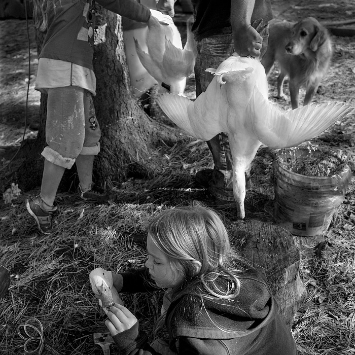 Larry Fink, Stacia Goose butchering working. © Larry Fink