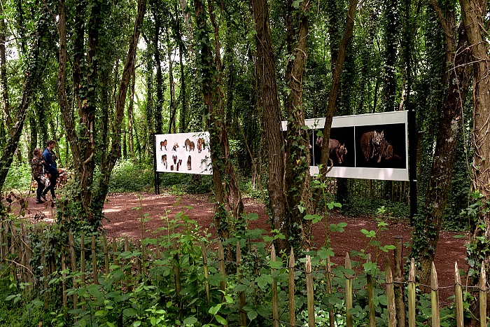 The setting of the exhibition L'Arche photographique at the Labyrinthe végétal in La Gacilly within the Festival Photo La Gacilly 2017. © Stefania Biamonti/FPmag.