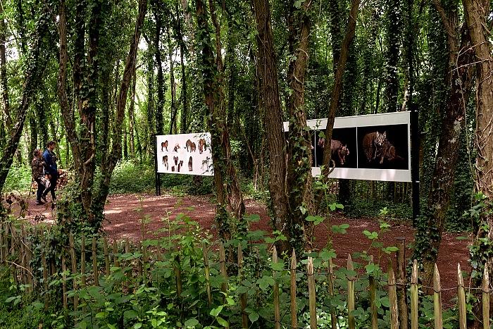 L'allestimento della mostra L'Arche photographique presso il Labyrinthe végétal a La Gacilly in occasione di Photo Festival La Gacilly 2017. © Stefania Biamonti/FPmag.