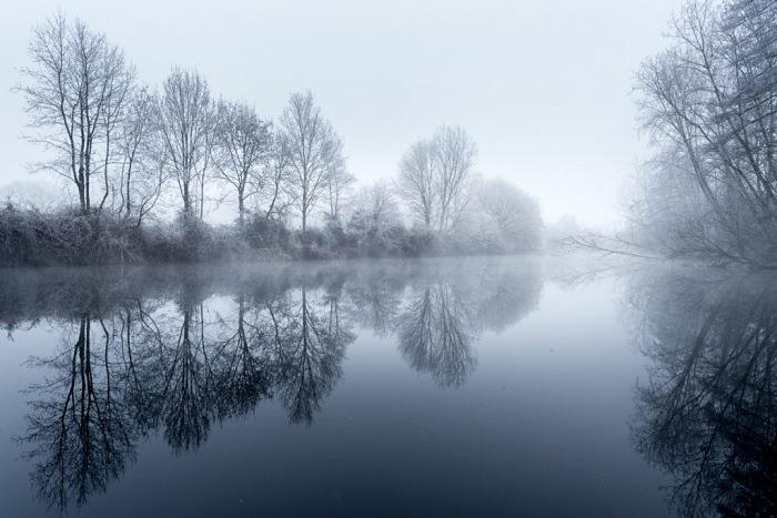 Emmanuel Berthier, L'hiver sur les marais de Glénac. La nature est figée par le froid. © Emmanuel Berthier.
