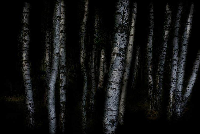 Erminio Annunzi, da Nel buio si cela la luce. © Erminio Annunzi.