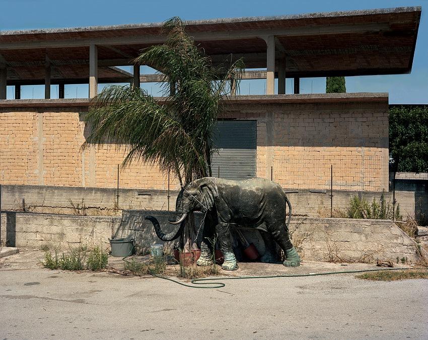 Avola. 2012. © Carlo Garzia.