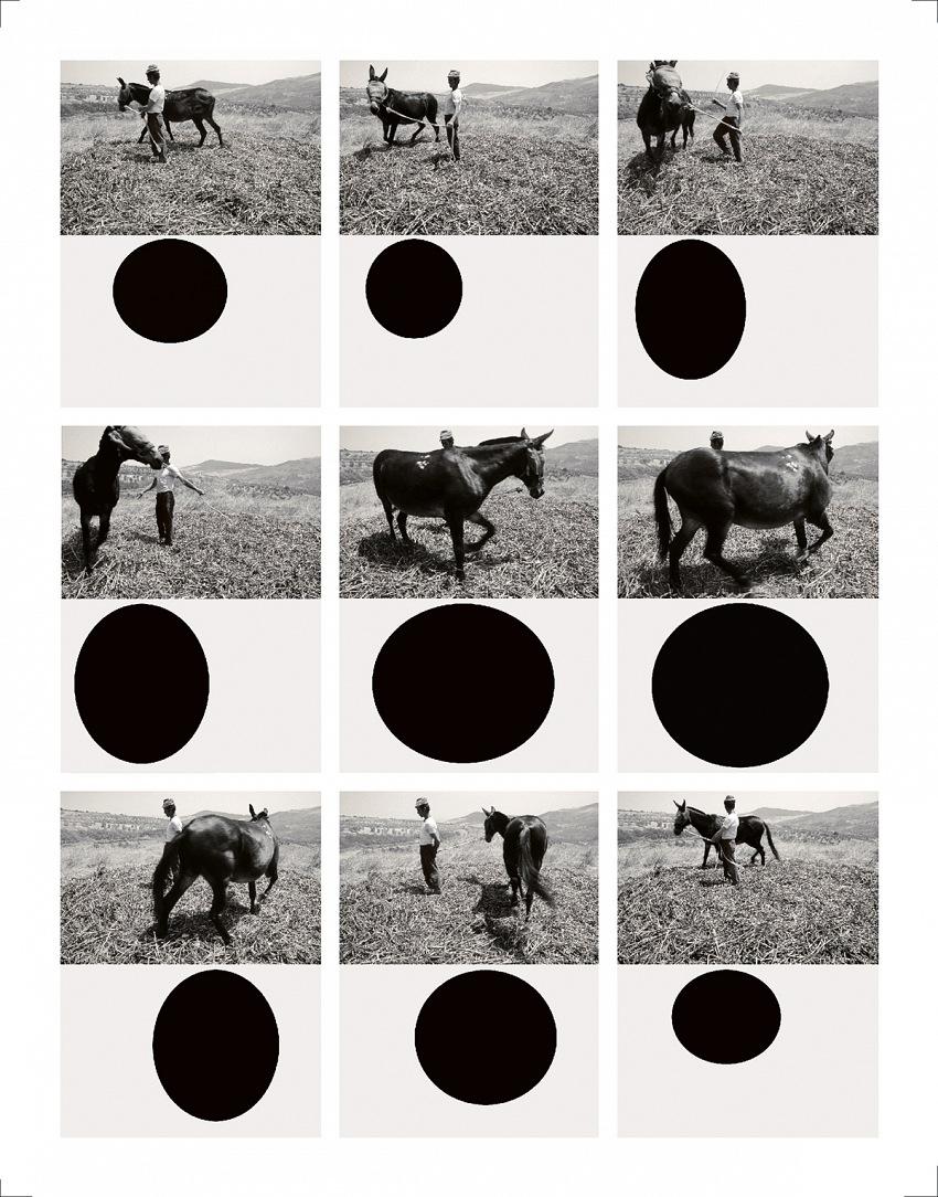 Mario Cresci, Geografia Naturalis, 1975-2011. © Mario Cresci