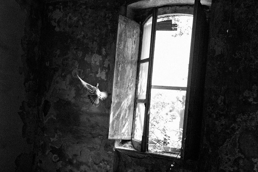 Dal libro Rarefaction di Carlo Riggi. © Carlo Riggi.